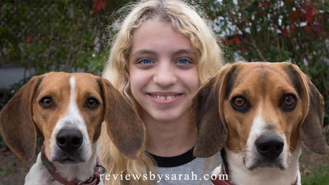 Live with Two Beagles